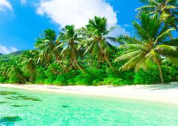 Descuento fondos de verano SUSU Fotografía de verano Backdrops Azul Mar Verde Árbol Antecedentes 5x7ft Algodón Poliéster Blanco Nube Paisaje Contexto