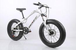 Wholesale 20 inch speed mountain bike Double disc brake reduce vibration super wide beach car Carbon steel frame al40902