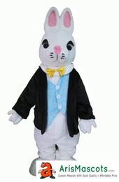 Funny Adult Eastern Bunny Rabbit Mascot Costume Holiday Mascots Cartoon Mascot Costumes for Kids Birthday Party Custom Mascots at Arismascot