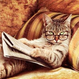 Wholesale New Needlework Glasses Cat Lying On The Sofa Reading book Diamond Painting Mosaic Diamond Embroidery With Home Decoration
