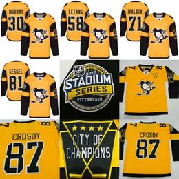 Promotion série de hockey 2017 Stadium Series Hommes Pittsburgh Penguins 87 Sidney Crosby Evgeni Malkin Kris Letang Matt Murray 81 Phil Kessel jersey de hockey cousu