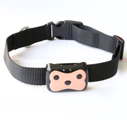 Wholesale Mini Smart GPS Tracker For Pet dog Cat With Collar Frequency GPRS GPS LBS Dual Location With APP Waterproof