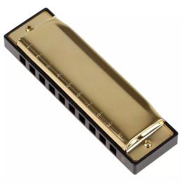 Harmonica diatonique c cygne en Ligne-Harmonica diatonique professionnelle Golden Swan Harmonica Blues Reed 10 trous 20 tonalités Key of C / G Accessoires pour instruments de musique