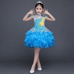 Children's dresses, princess dresses, children's chorus dresses, trailing dresses Girls skirtFlower Girl Dress hostess Dress Girls wedding