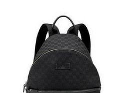 Wholesale 2017 Luxury brand women backpack men bag Famous designers canvas men s backpack women s travel bag backpacks