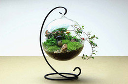 Supports métalliques pour le verre en Ligne-1SET Verre clair Vase à bouteille ronde avec 1 trou Flower Plant Vase en métal suspendu Vase pas n'importe quelle plante Hydroponique Home Decor Vase G161
