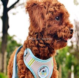 Nylon Dog Cat Pet Leash&Collar Ventitate Harness Small Middle Dog Lead Rope Pet Training Leash Pink&Blue Color 5PCS LOT S,M,L,XL ,XXL Size