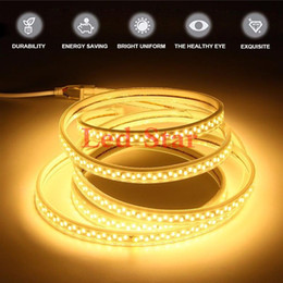Wholesale SMD leds m Led Strip Lights AC V V bandes flexibles Led bande lumières m ft blanc corps