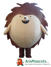 adult funny Hedgehog Mascot costume for kids deguisement mascotte custom mascots arismascots professional team mascot maker company