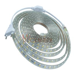 Wholesale 60 LEDs M SMD5050 RGB Red Green Blue Yellow Warm Cool White LED Strip Lights IP68 Waterproof LED Neon Sign Light AC V