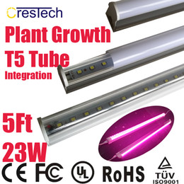Wholesale LED Plant Growth Light T5 LED Tube for Hydroponics System Flower Plant Grow Box Tent Full Spectrum Pink Purple Color