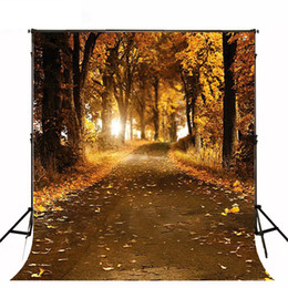 Superbes images photographiques en Ligne-5x7ft Falling Ginkgo Leaves Autumn Background Country Road Beautiful Scenery Trees Wedding Scenic Backdrop Photographie Studio Booth Props