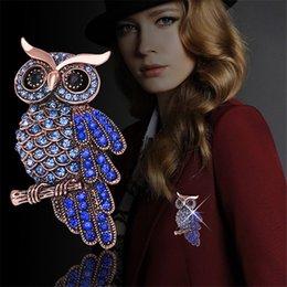 Wholesale JC Brand Vintage Retro Owl Brooch Women Chic Purple Cristal Broches Designer Charm Clothing Accessories BR006