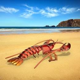 Wholesale TOOARTS Lobster Ornament Crafting Home furnishing articles Decoration Art Metal sculptrue Iron sculpture A039