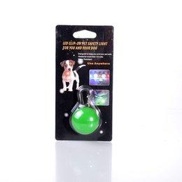 Wholesale Manufacturers selling pet LED luminous pendant flash identification card