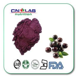 Wholesale g organic acai berry fresh fruit extract powder