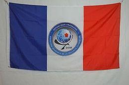 Services de l'équipe à vendre-DGSE France Agence des services secrets Bannière Drapeau 3X5Ft Personnalisé Amérique USA Team Soccer Collège Baseball Drapeau