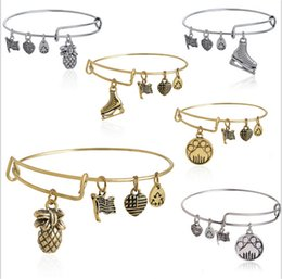 Wholesale Alex and ani bangles bracelet pineapple dog s paw Alloy pendant Alex Ani Bracelets Women Charms Vintage gold sliver skating shoes wristband
