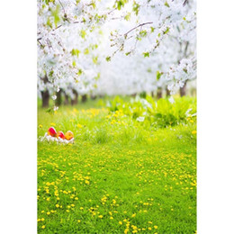 2017 backdrops de vinyle de photographie de bébé Green Grassland Vinyl Backdrop pour la photographie Spring Flowers Background 5x7ft Children Newborn Baby Photo Decor Props abordable backdrops de vinyle de photographie de bébé