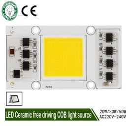 LED COB Lamp Chip 20W 30W 50W 220V Input Smart IC Driver Fit For DIY LED Floodlight Spotlight Cold Warm White