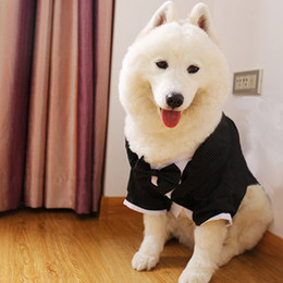 Wholesale Big Dog Suit Evening Dress Fashion Halloween Party Costume for Dog Cosplay Suit for Pet