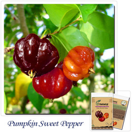 Vegetables pepper seeds 50pcs Colorful ornamental pumpkin sweet pepper (edible) Non-gmo! can bonsai,Home gardening DIY