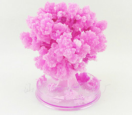 iWish 2017 Visual Magical Artificial Sakura Paper Trees Christmas Growing Tree Desktop Cherry Blossom Magic Kids Toys Japanese Gifts 5PCS