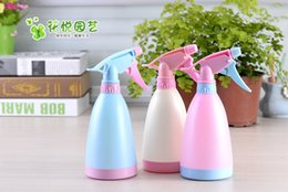 Wholesale 5pcs Plastic Sprayer Water For Succulents Planter Micro Landscape Fairy Garden Candy Color Watering Can Garden Tools