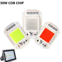 Smart IC LED Matrix Cob Lamp 50W 30W 20W AC 220V Blue Red Green Warm White Light For Led Flood light Outdoor Light Decoration
