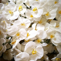 REAL TOUCH ORCHIDS Large Size PU Orchid Flower Artificial Flowers Princess Butterfly Orchid Phalaenopsis for Wedding Centerpieces