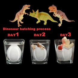 Incubate dinosaur egg toys,Put it in the water for 3 days to hatch out the dinosaur.