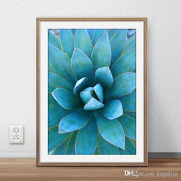 Plants Blue Succulent Close Shot Wall Decor Pictures Art Poster Prints Home Decor Poster Canvas Unframe 16 24 36 47 Inches