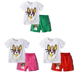 Kids Clothes Cute Dog Cartoon Casual Suits Sets Children Clothes T-shirt+Pants 2pcs Suit In 3 Colours