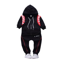 2018 Spring Summer Children Girls Boys Active Clothes Baby Hooded Jacket Pants 2 Pcs Sets Fashion Toddler Casual Tracksuits