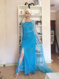 Wholesale Cosplay Elsa Queen Adult Women Dress Costume Cosplay Flowery Fancy Dresses Adult onesies cosplay costumes renaissance dress