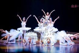 Wholesale Professional ballet child white swan costume tulle dress female black swan professional ballet tutu bailarina