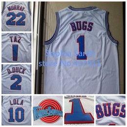 Wholesale Space Jam Bill Murray Bugs Bunny TAZ Lola Bunny D DUCK White Basketball Jersey Tune Squad Basketball Jersey sport