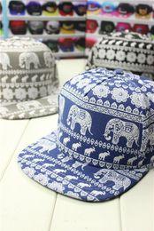 Wholesale New Printing Elephant kateboard Baseball Hats Men Women s Leisure Hat Dancer Caps Snapback Outdoor Sun Hats