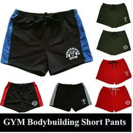 Wholesale Brand Cotton Men s Gym Shorts Gold Powerhouse Shark Shorts Fitness Men Bodybuilding Workout Sports Training Running Shorts