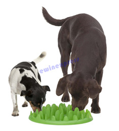 Discount plastic dog bowls wholesale hot sale good quality Interactive Med - Large Dog cat Puppy Slow Feed Bloat Non Slip Feeder Bowl Dish