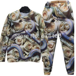 Wholesale w20151223 Roses and a snake printing sweat suit tracksuit for men women girl boy sport joggers sweatshirt pants set outfit clothing