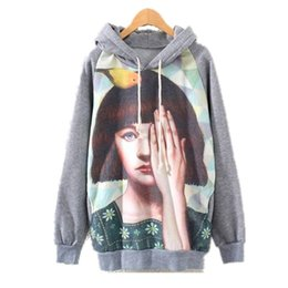 Wholesale Fashion Women sweatshirt winter casual sports suit flower bear Animal Owl Scenery print harajuku fleece hooded sweats tracksuit