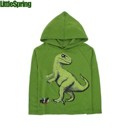 Children Dinosaur Dino Hoodie - Kids Dinosaur hooded sweater Boys girls dino hoodies B LZ-S0215