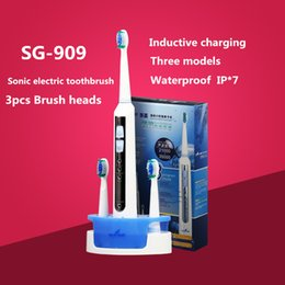 Wholesale Oral hygiene Sonic Electric toothbrush Rechargeable ultrasonic Tooth brush Inductive charging Waterproof SG Seago