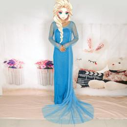 Wholesale Frozen Princess Elsa Dress Adult Size Snow Queen Elsa Cosplay Dress Halloween Frozen Dress New Arrival
