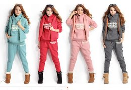 Wholesale Autumn Winter Sports Fleece Hoodies Coat Vest Pants Tracksuit Sweat Suit