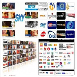 Europa servidor Cccam Cline Sat SD / HD paquete SKY Reino Unido SKY SKY ITALIA DE CANAL + DIGITAL + Euro por 1 año