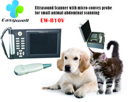 Wholesale Handheld Ultrasound Diagnostic System EW B10 with mico convex probe ultrasound scanner