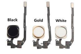 Pour iPhone 5S 6S 6 plus Home Button Accueil Key Flex Cable Ribbon Assembly pour iphone 5s 6 Black White Gold Livraison gratuite