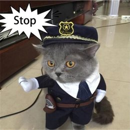Cat Protects Police Department